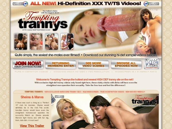 Free Tempting Trannys Video 24