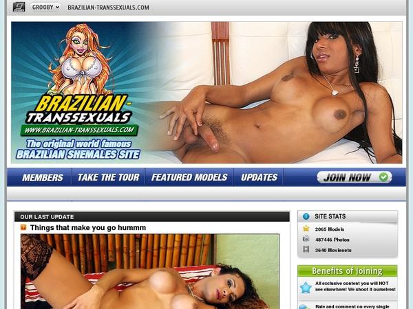 Free Brazilian Transsexuals User