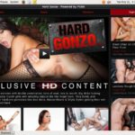 Buy Hard Gonzo Account