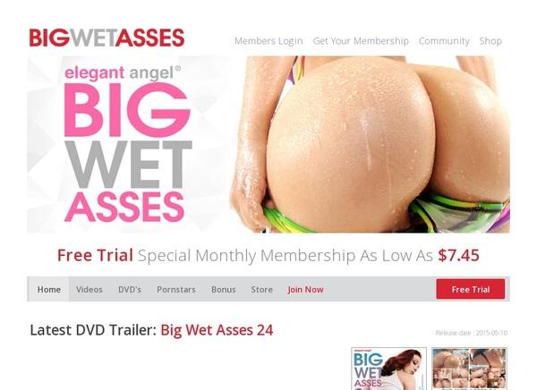 Big Wet Asses Login Codes